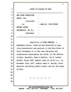 thumbnail of deposition-of-ryan-fendley